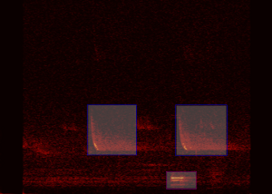 Labelling a Spectrogram